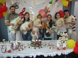 Resultado de imagem para festa de aniversário para cachorro