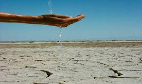 Image result for punjab dry