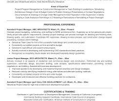Project Manager Resume Summary Examples Surprising Project Management Resume Examples Summary Samples 54