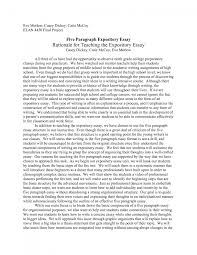 college essay sample college expository essay examples college good