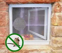 Insektenschutz Für Kellerfenster Mit Nagersicherem Edelstahlgitter