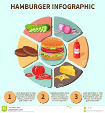Sandwich Chart Hamburger Sandwich Infographic Stock Vector Illustration