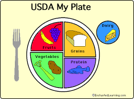 food plate in spanish. Modren Food The US Department Of Agriculture Food Icon  To Food Plate In Spanish T