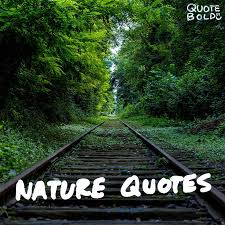 40 Best Nature Quotes To Inspire Your Day W Images Quote Bold Enchanting Best Nature Quotes