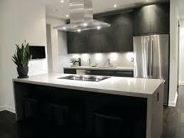 Kitchen Cabinets In Nyc Modern Kitchen Cabinets On Used Kitchen Best Modern Kitchen Cabinets Nyc