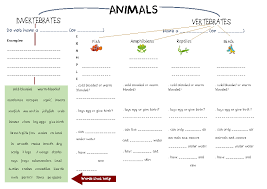 Worksheet: Animal Classification