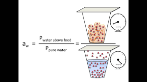 Moisture Content Moisture Content And Water Activity