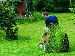 Lawn Mowing Lawn Care Mowing Rochester Brighton Ny