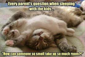 Funny Quotes For Kids Simple Cute Funny Quote About Kids Why Parents Can Rarely Sleep In Quotes