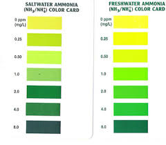 Master Test Kit Chart Up To Date Freshwater Ammonia Color Chart Freshwater Master