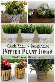 14 Inexpensive Landscape Plants