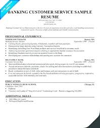 Customer Services Resume Beauteous Examples Of Professional Resume Custom Example Resumer