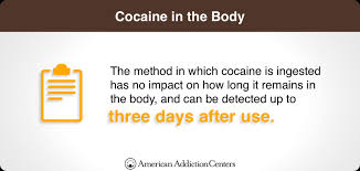 Drugs Out Of System Chart How Long Does Cocaine Stay In Your System