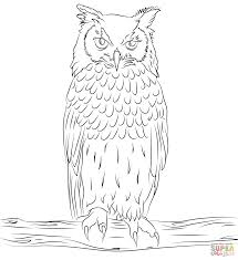 Owl Owl Coloring Pagesfree