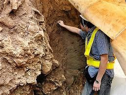 「石垣島で日本最古となる2万年前の人骨発見。」の画像検索結果