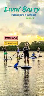 Sup Paddle Boards Kayaks Surf Shop Dunedin Livin