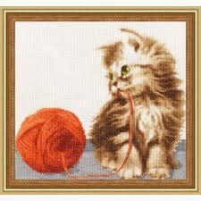 Kitten Color Chart Kitten With A Ball