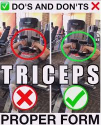 how to tate press with dumbbells bowflex dumbbells bowflex workout dumbbell workout bicep