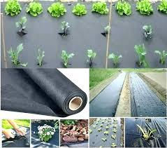 landscape fabric in vegetable garden weed barrier best cover for superb