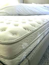 plush vs firm mattress. Firm Vs Plush The Best Mattress Reviews Luxury Soft
