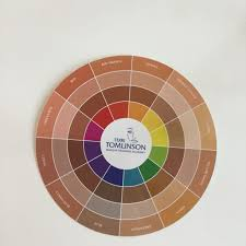Flesh Tone Color Wheel In 2019 Skin Color Palette Colors