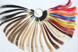 Detailed Explanations Of Evawigs Color Chart And How To