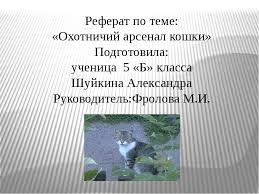 Презентация Реферат на тему Охотничий арсенал кошки  слайда 1 Реферат по теме Охотничий арсенал кошки Подготовила ученица 5 Б