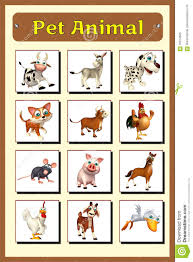 Pet Animal Picture Chart Pet Animal Chart Stock Illustration Illustration Of