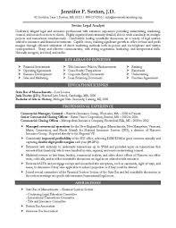 Entry Level Attorney Resume Examples Internationallawjournaloflondon