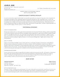 Federal Government Resume Examples Magnificent Federal Government Resume Samples Federal Resume Builder Free