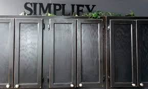 Painted Oak Cabinets Kitchen Cabinet Painted With Black Color Ideas Painting Oak