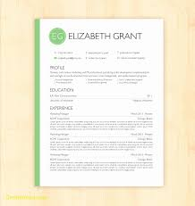 Resume Templates Google Docs Free Awesome Resume Templates For Google Docs Best Templates 8