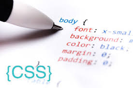 بهترین زبان برنامه نویسی برای شروع!