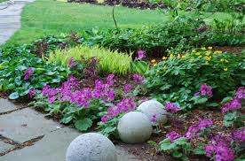 Small Picture Plants Garden Design