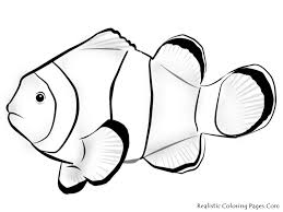Tasty Clown Fish Coloring Pages Printable To Funny Tropical Fish