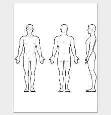 Human Body Outline Front And Back Pdf Body Outline Human
