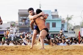 photo essay fight club livemint a n wrestler tries his luck on an unfamiliar fighting surface photo pradeep gaur