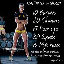 ashley conrad s fat burning muscle building celebrity circuit crossfit home workoutscrossfit resultsbest