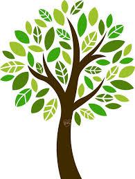ELM Tree Essentials - Home | Facebook