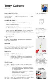 Seo Specialist/Search Engine Optimization Resume samples