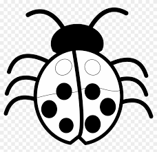 bugs image free pictures bug clip art image clipart of flowers black and white