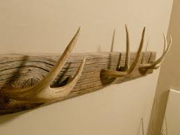 Antler Coat Racks 100 Decorative Hat Rack Ideas You Will Ever Need Antlers Horn and 8