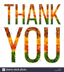 Word Thank You Word Thank You Written With Leaves White Isolated Background Banner