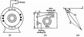 engineering rotor with main winding and start capacitor single phase induction motor wiring diagram