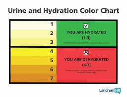 Hydration Color Chart Staying Well Hydrated Moto Related Motocross Forums