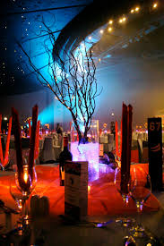 Fire And Ice Decorations Design Fire And Ice Wedding Party Theme 100 LuckyBella 3