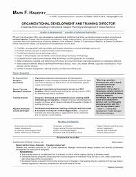 Sample High School Resumes Enchanting Resume Student Resume Examples Fresh Awesome Sample Applying Job