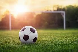 grass soccer field. Soccer Field Grass