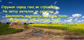 """""""Сильніші разом"""": Туск о вступлении в силу Соглашения об ассоциации Украина-ЕС - Цензор.НЕТ 4822"""