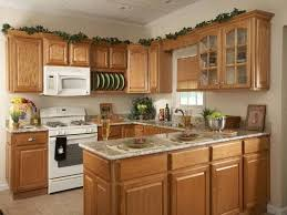 L Shaped Kitchen Remodel Kitchen Islands Pictures With L Shaped Kitchen Top Preferred Home